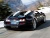 bugatti_veyron_gsv_2