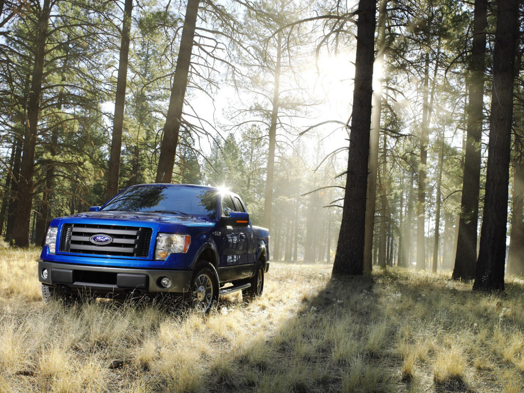 ford_f-150-2009_1