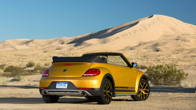 Beetle-Dune-14