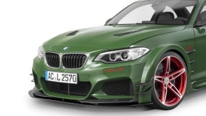 AC Schnitzer ACL2 -10